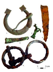 Penannular brooch, belt fittings, battle knife and bits from finds from Lööne. Photo: Marika Mägi