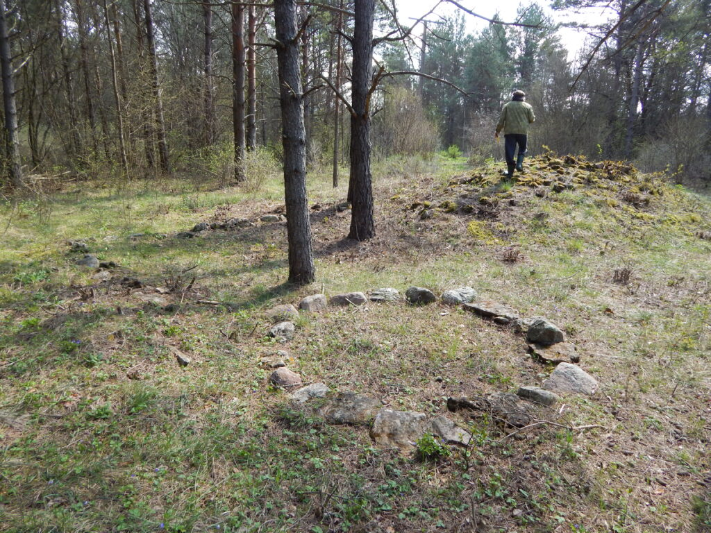 Viking Age circular stone graves at Piila, Saaremaa.