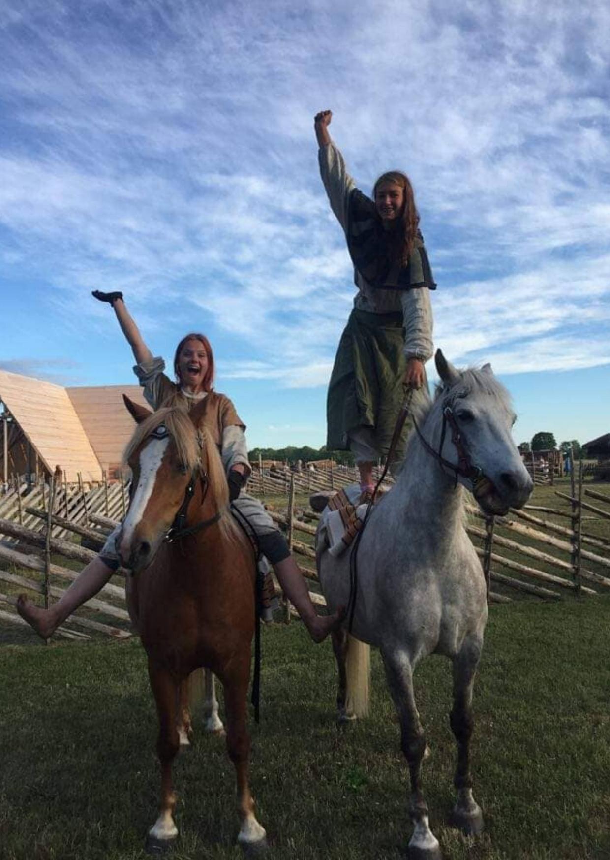 Asva Viikingiküla