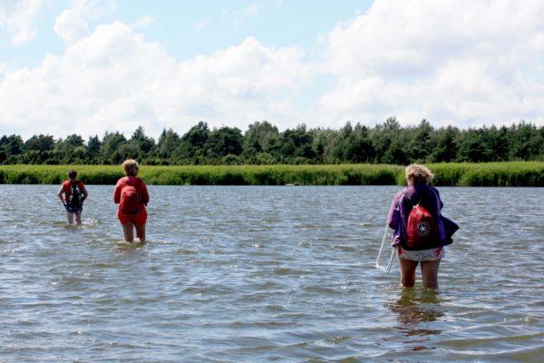 Siinsed väikesaared on üheks põhjuseks Saaremaale reisimiseks