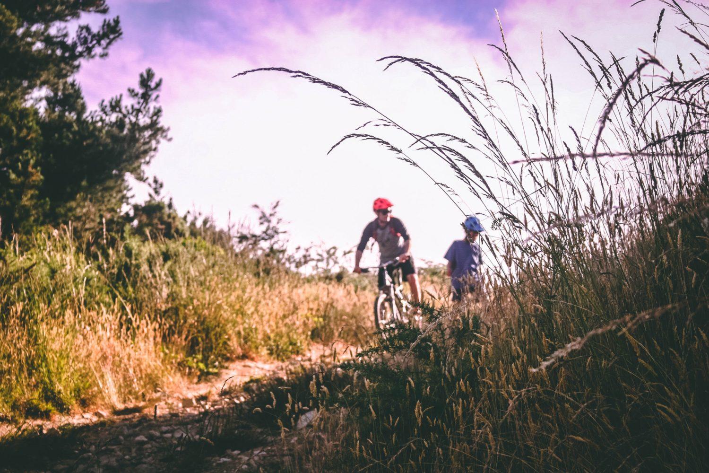 Rattaretked Saaremaal ja Muhus