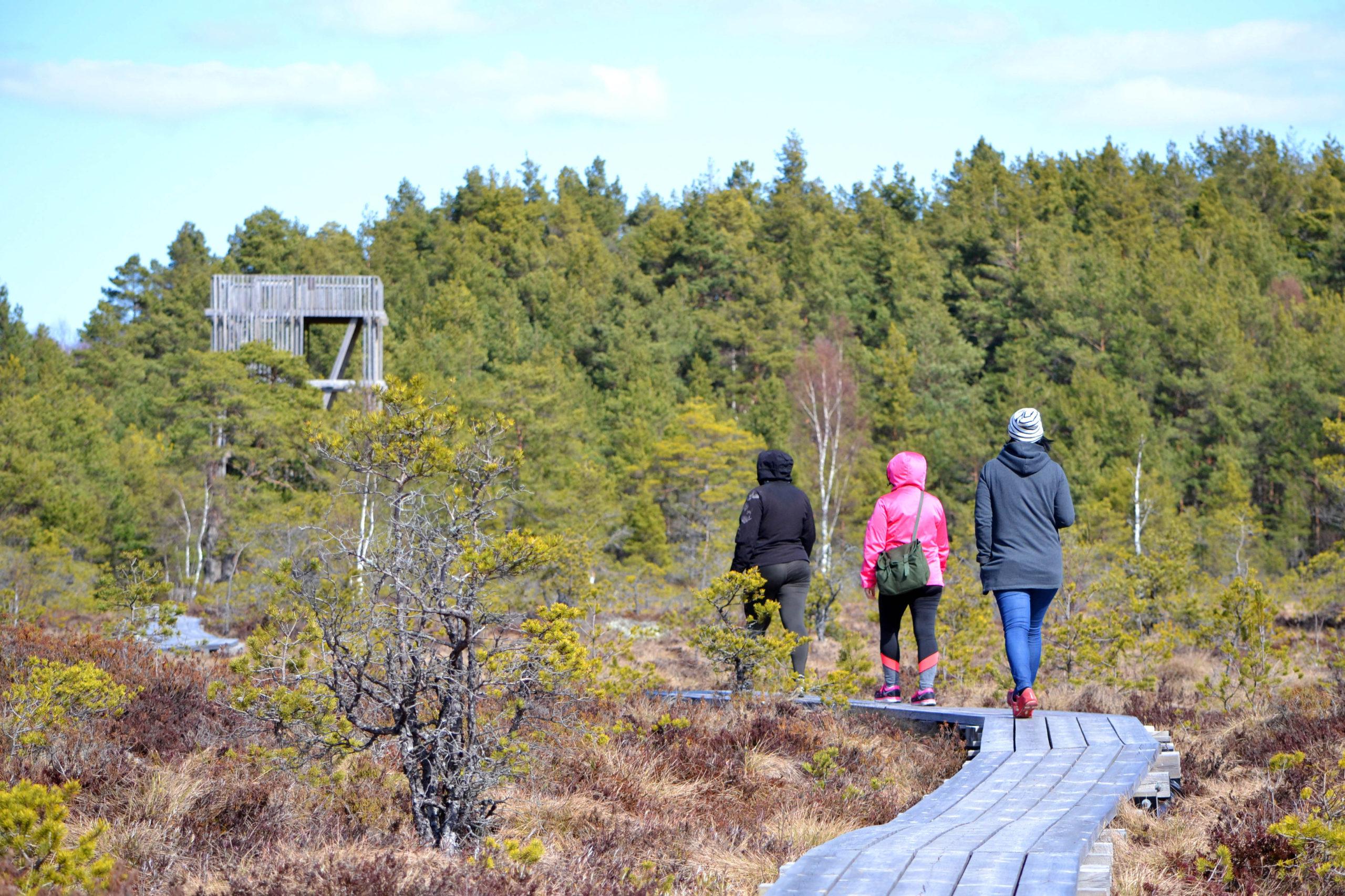 Saaremaal on le 100 km matkaradu
