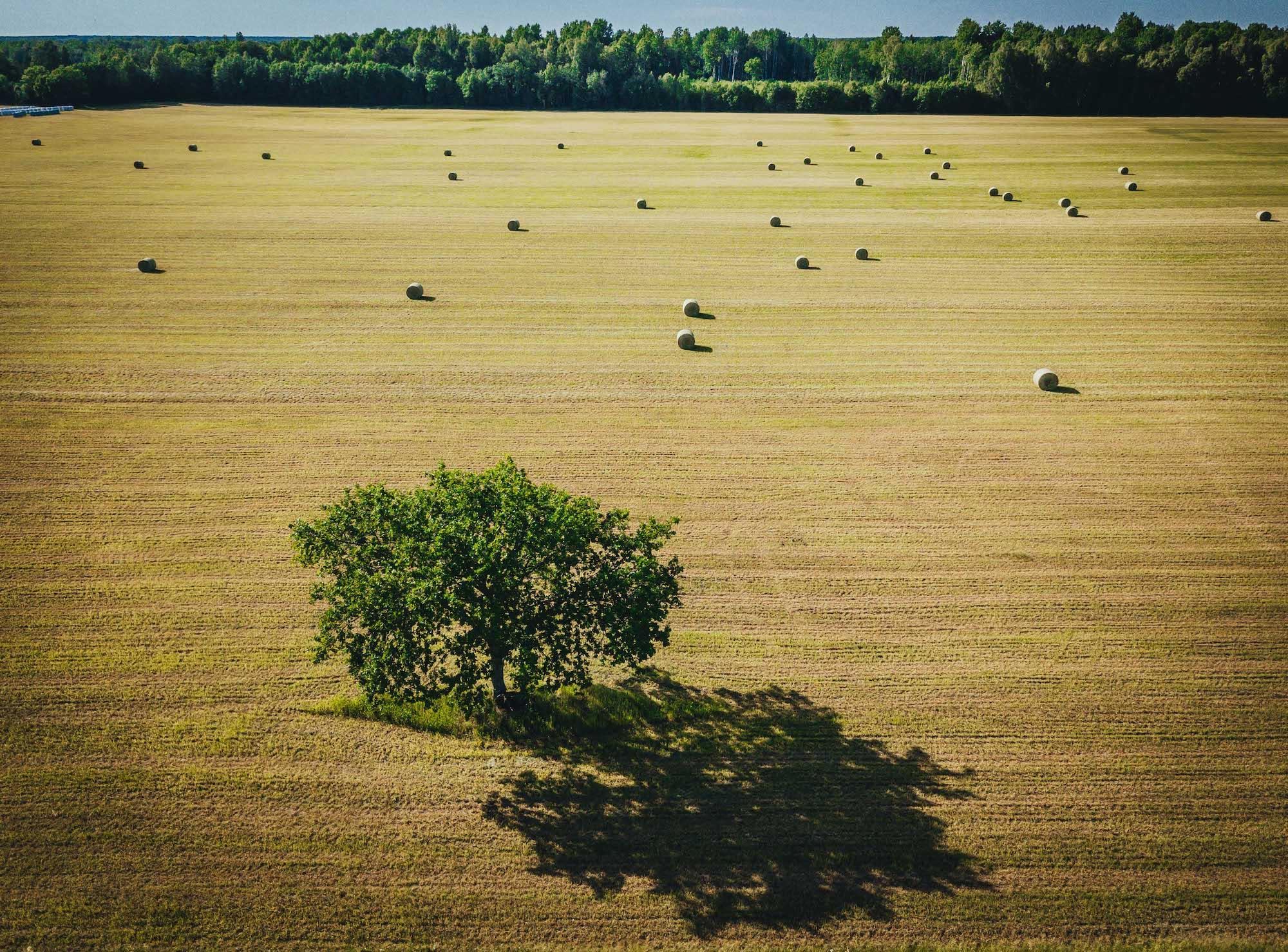 Saaremaa kaunid paigad ootavad avastamist Saare teede kutse