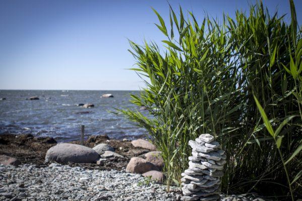 Saaremaal on puhas loodus