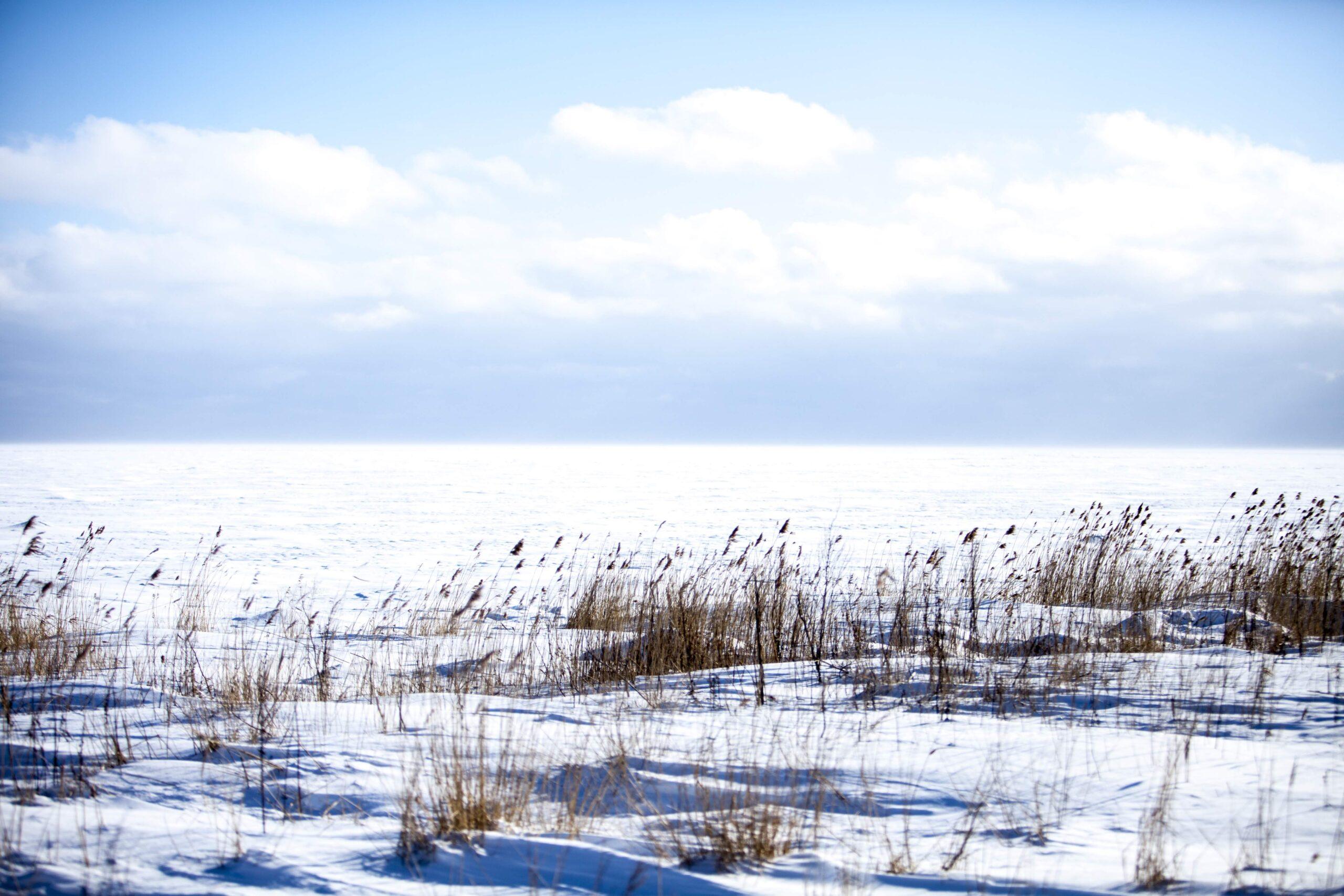 Saaremaa talvel