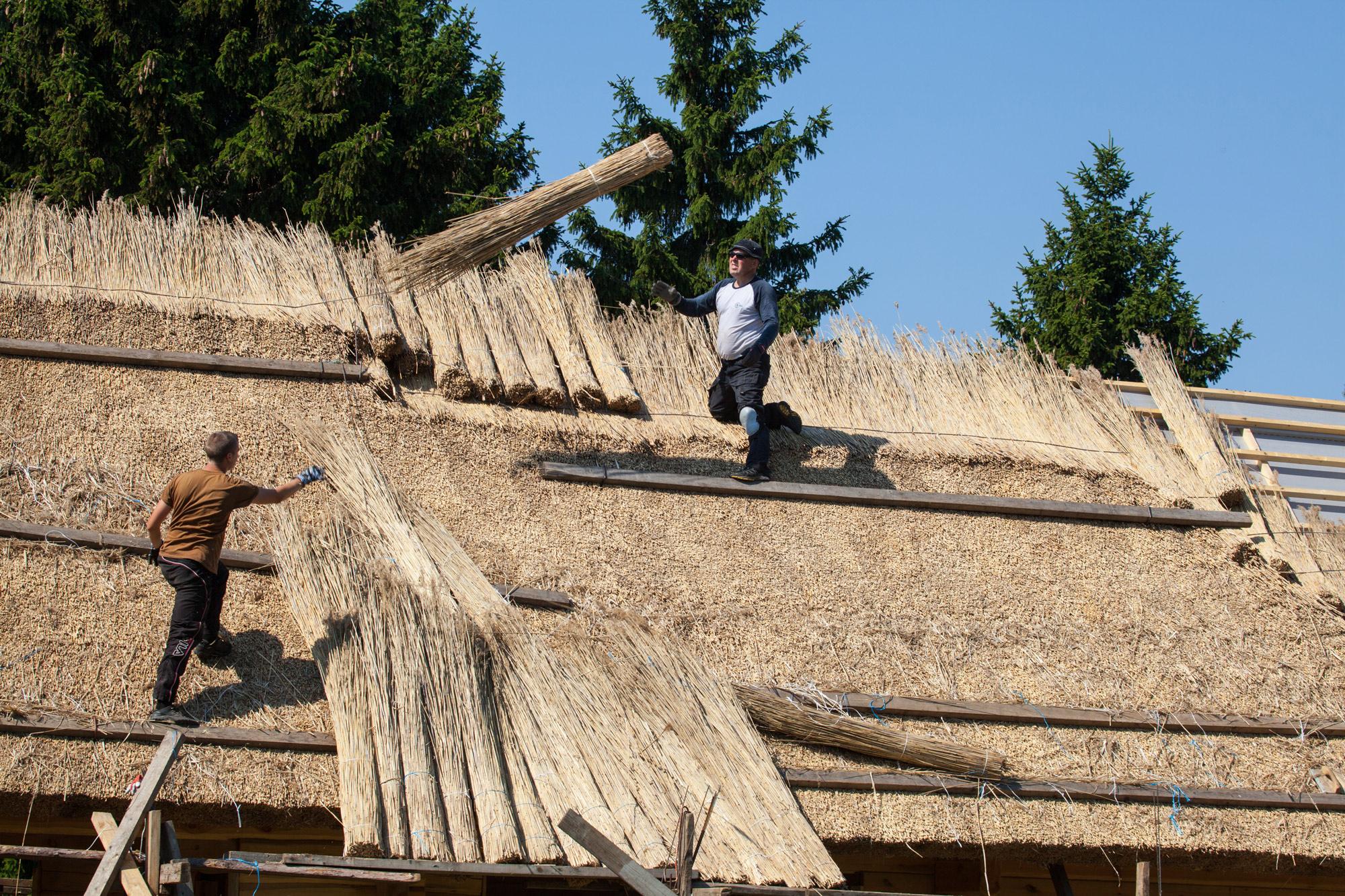 Rookatus Saaremaal