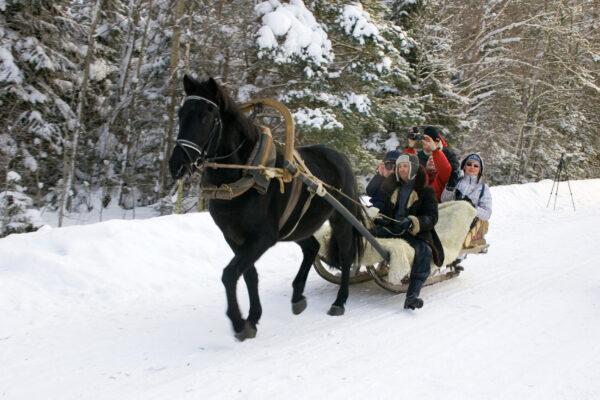 Reega sõit on üks võimalik tegevus, mida Saaremal talvel teha