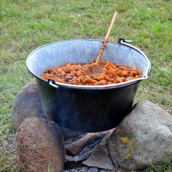 Viikingid tegid palju süüa padades
